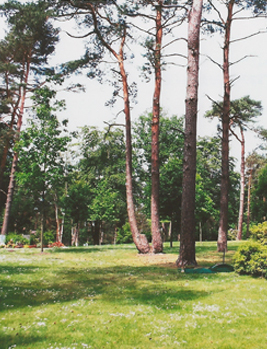 Friedpark Sennefriedhof